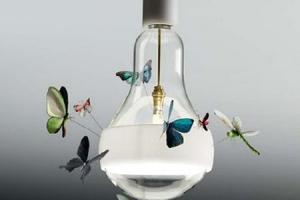 6f44157d0589b5ce75d6a9d8332fbb77--butterfly-lamp-butterfly-pendant